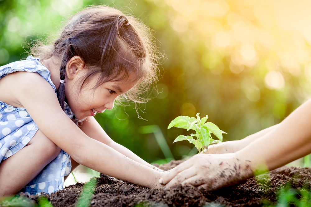How to Teach Your Preschoolers About Plants This Summer